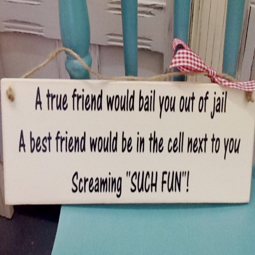 A True Friend Would Bail You Out Of Jail Plaque - Miranda Hart