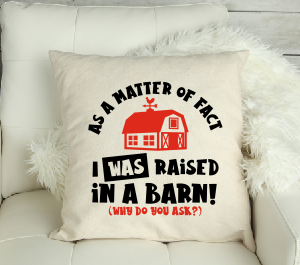 Born In A Barn? Funny Canvas Cushion